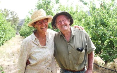 The joy of growing your own fruit trees