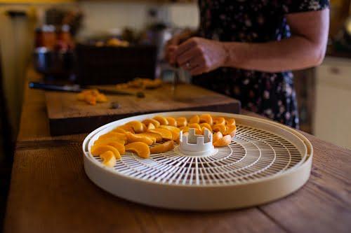 Drying fruit
