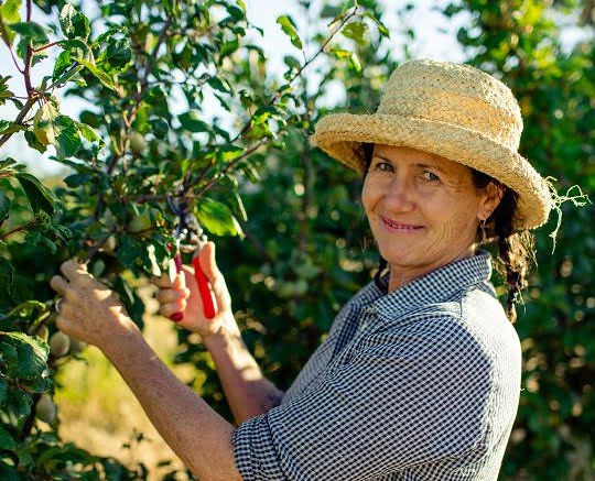 smiling woman pruning a plum tree