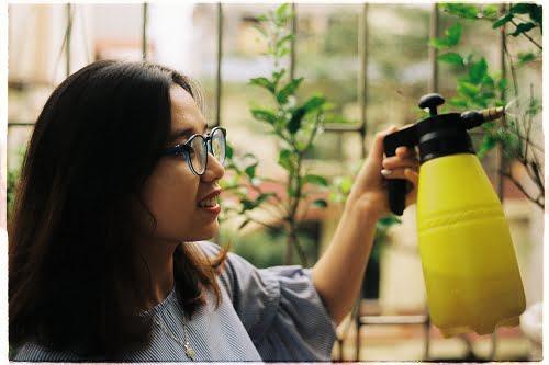 Make your own organic sprays
