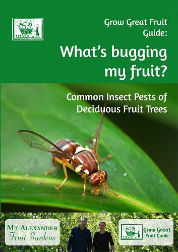 pests of organic fruit trees