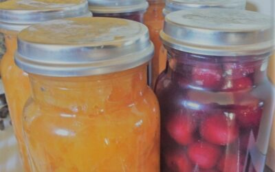 9 step process for preserving fruit