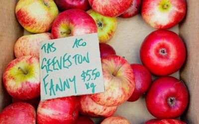 12 ways to make money from your fruit trees
