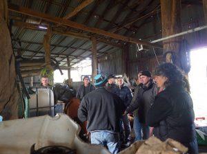 ANOO compost tea demo barn-480x359