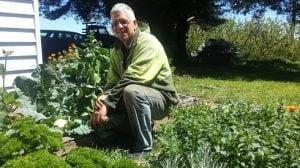 Hugh-vegie-garden-cauliflower-490x275