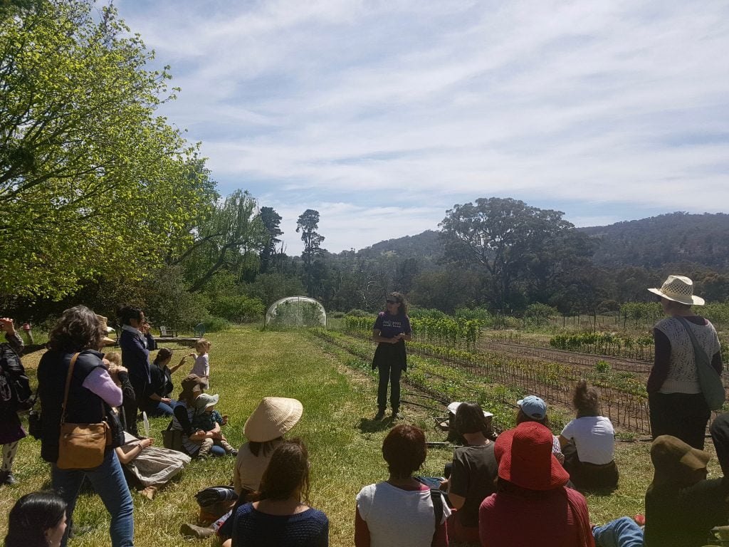 Katie explaining the Harcourt Organic Fruit Tree Nursery at our open day