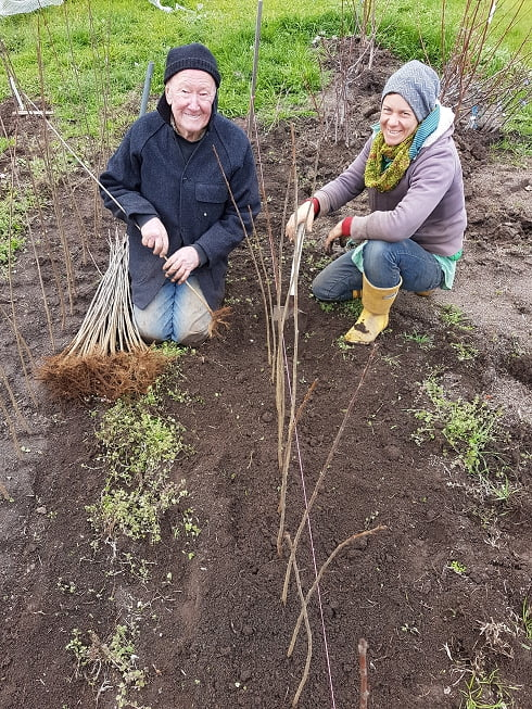 Merv and Sas planting rootstocks
