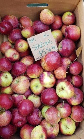 Certified organic spartan apples