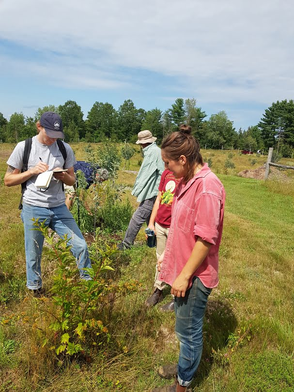 Enthusiastic fruit growers on a field trip at the Maine Heritage Orchard