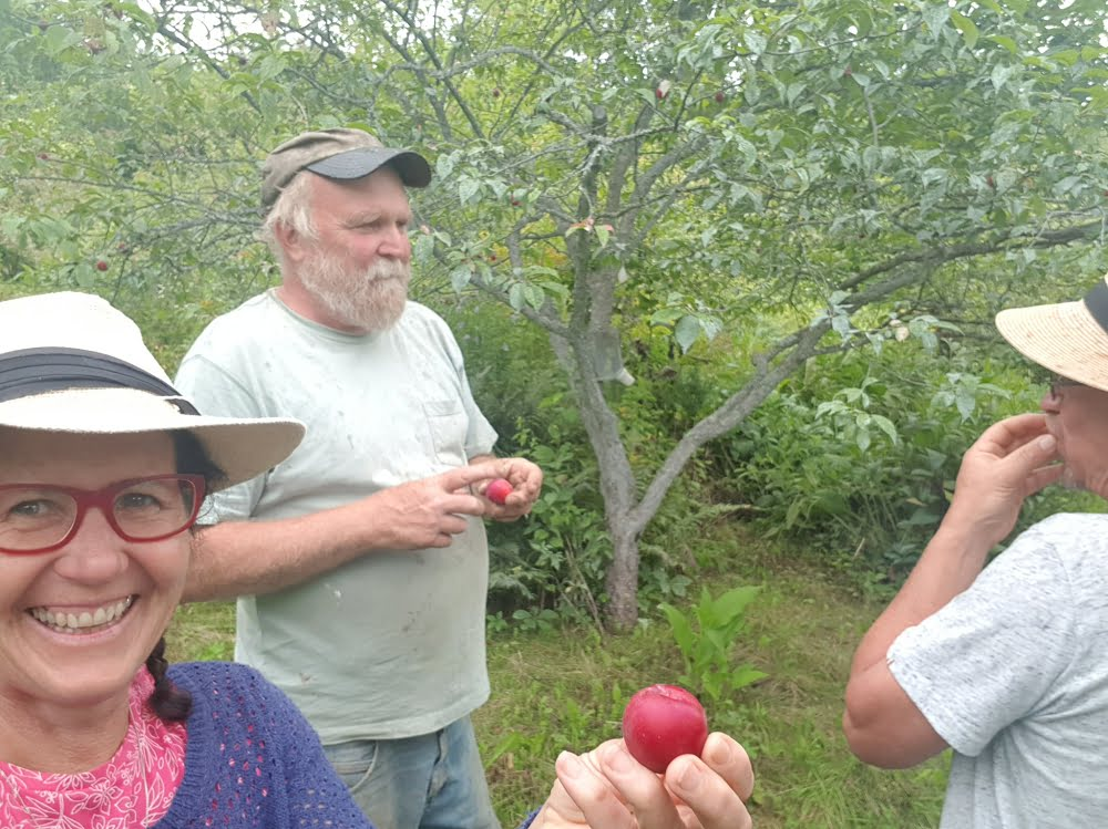 Enjoying a tour of Michael Phillips' (author of The Holistic Orchard)  orchard in New Hampshire