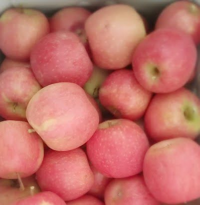 Pink lady apples that are pale in colour