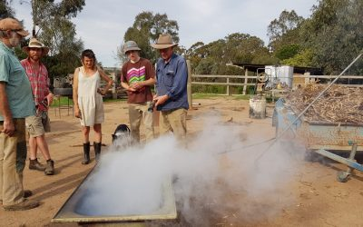 Using biochar to improve your soil