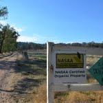 driveway-nasaa-sign-480x317