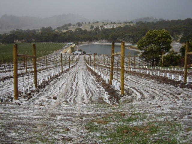 hail-mcleans