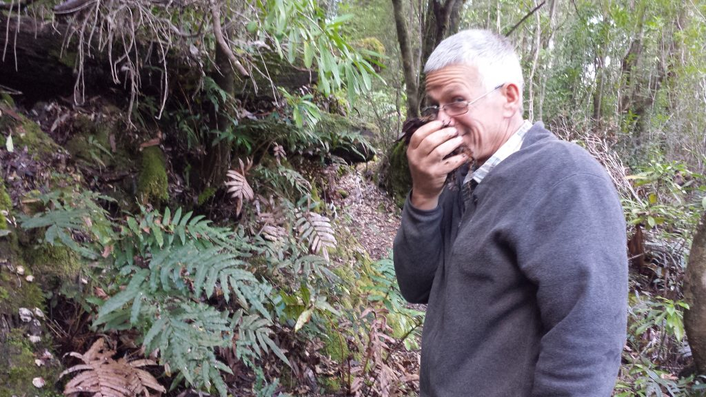 Hugh sprung smelling rainforest soil