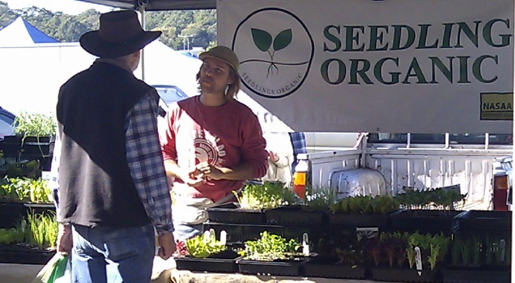 Organic seedlings are a great way to get started with growing your own food