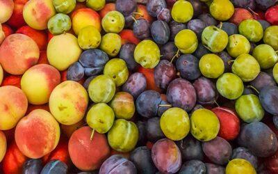 Three ways to maximise fruit harvest in your garden