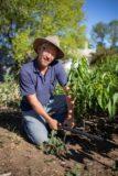 Irrigation management plan