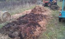 Build a hot compost pile
