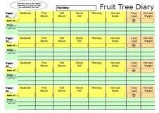Using your Fruit Tree Diary