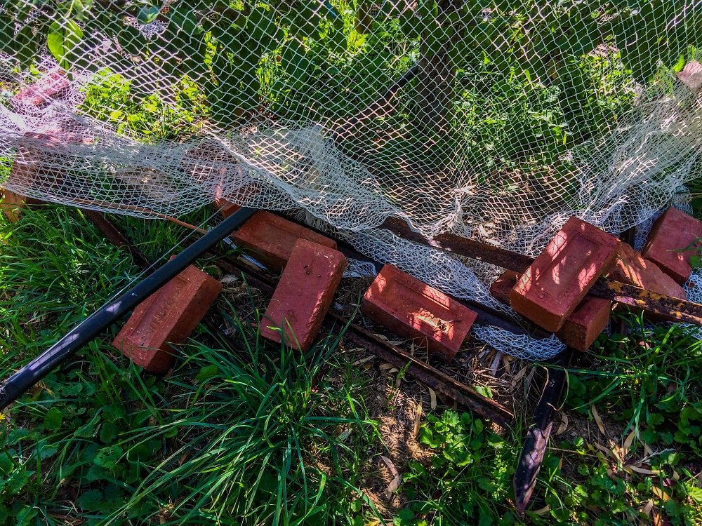 Bricks and poles holding down a fruit tree net