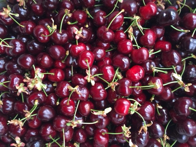 Nine good reasons to grow cherries