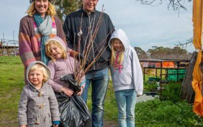 Why planting fruit trees matters