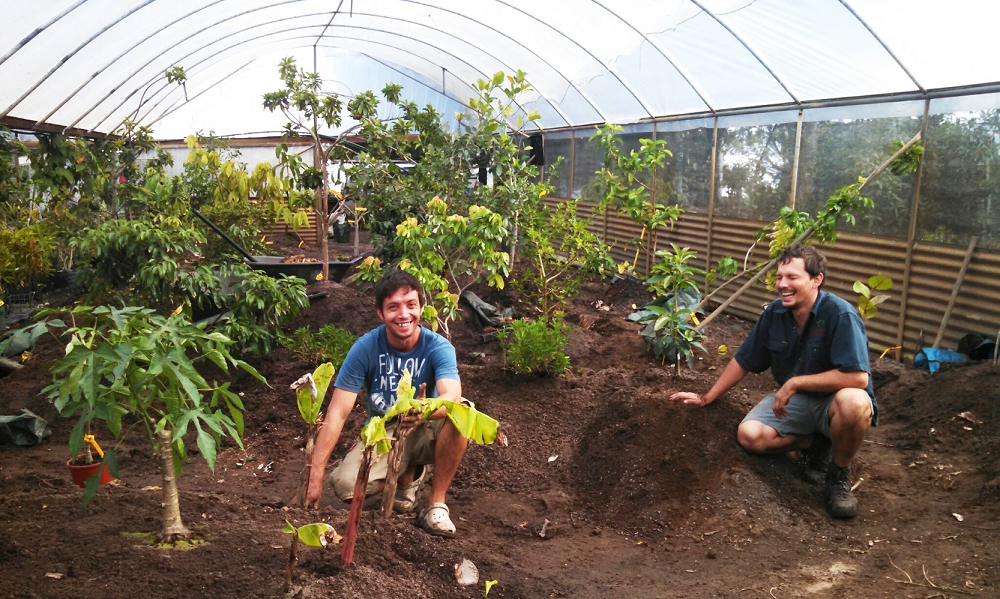 Andre and Paul planting out the Biodome at Daleys Nursery