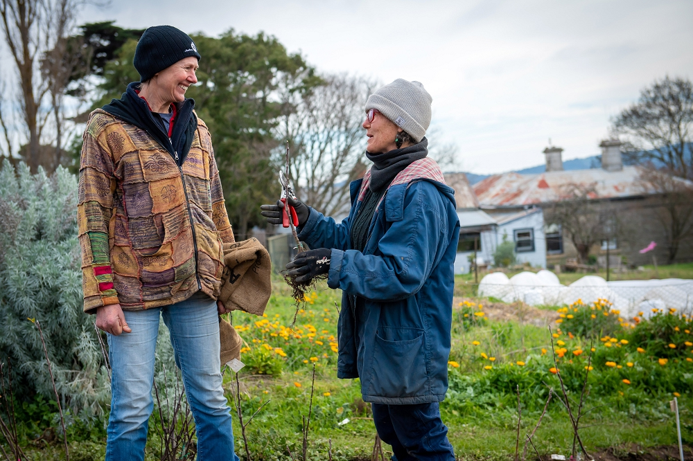 Grow Great Fruit member Julie collecting her trees from the Nursery  (Photo: Brendan McCarthy)