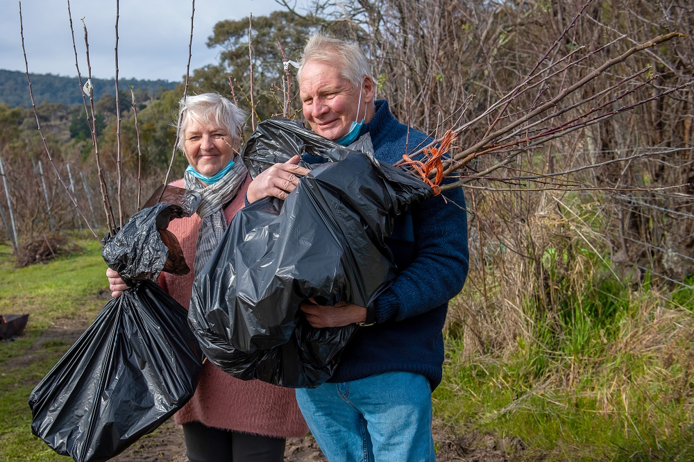 Heading home with bags of new trees to plant in the garden.  (Photo: Brendan McCarthy)
